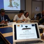 ASAJA presents the LIFE RESILIENCE project in the Group of Civil Dialogue of Olive Oil of the EC