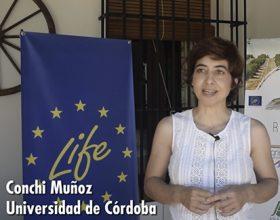 Presentación Universidad de Córdoba (UCO) en el Kick of meeting de Life Resilience