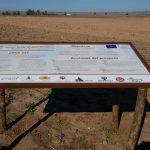 Information notice boards