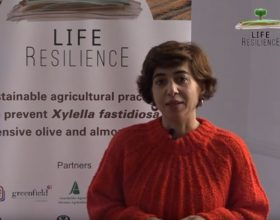 Conchi Muñoz, researcher at the UCO, updates the advances of the Life Resilience project