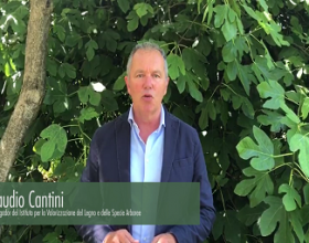 Claudio Cantini: researcher at the National Research Council of Italy Trees and Timber Institute