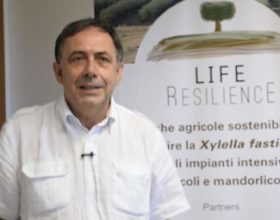 """The major objective is to find tools to prevent the introduction of Xylella"" - Donato Boscia"