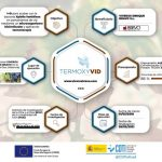 The project against Xylella Fastidiosa, TERMOXYVID, obtains the first positive results