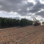 Sowing cover crops on the El Valenciano model farm