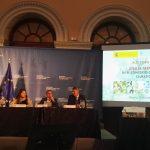 Avances con la Xylella fastidiosa en España