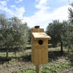 Nest boxes and insect hotels have been installed in Traversagna farm