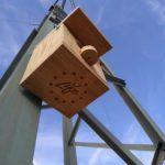 La finca El Valenciano tiene nuevas cajas nido y hoteles de insectos