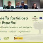 El presente y el futuro de Xylella fastidiosa en España a debate en el webinar de LIFE Resilience