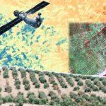 Jornada sobre las nuevas aplicaciones de la teledetección en la agricultura de precisión