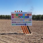 Visita de campo en las fincas demostrativas de Life Resilience